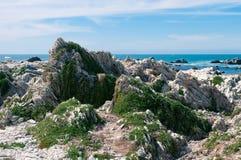 Rocas en la calzada de la península de Kaikoura, Nueva Zelanda imagenes de archivo