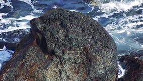 Rocas en la isla de Kunashir almacen de video