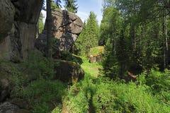 Rocas en la madera del pilar de Krasnoyarsk, Siberia Imagenes de archivo