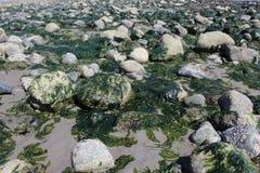 Rocas en la playa Foto de archivo