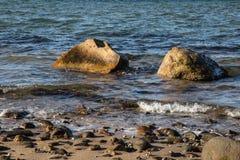 Rocas en la puesta del sol en Sag Harbor Nueva York Foto de archivo libre de regalías