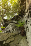 Rocas en naturaleza Imagen de archivo