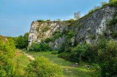 Rocas entre árboles verdes en Kraków, Polonia Fotografía de archivo