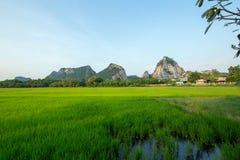 Rocas famosas de la piedra caliza en la provincia de Ratchaburi, Tailandia foto de archivo libre de regalías