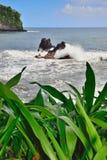 Rocas gemelas en la bahía de Onomea en Hawaii Imagen de archivo