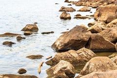 Rocas grandes en el agua Imágenes de archivo libres de regalías