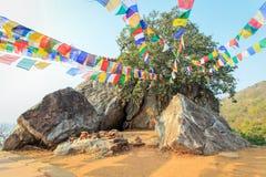 Rocas grandes en Mulakandha Kuti, Fotografía de archivo libre de regalías
