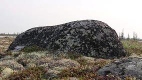 Rocas grandes en un campo abierto metrajes