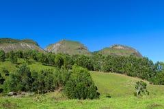 Rocas lisas de la montaña, el Brasil Imágenes de archivo libres de regalías