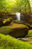 rocas Musgo-cubiertas cerca de la caída del wallter. Foto de archivo
