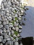 Rocas para la decoración la charca Imagenes de archivo