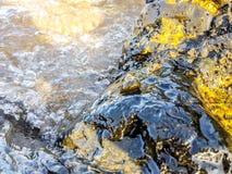 rocas volcánicas en la orilla del mar mojado por las ondas y con un caracol de mar en el centro Billete de banco reajustado nuevo foto de archivo libre de regalías