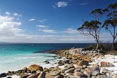 Rocas y árboles de la playa Imágenes de archivo libres de regalías