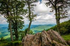 Rocas y árboles en Jewell Hollow Overlook en el nacional de Shenandoah foto de archivo