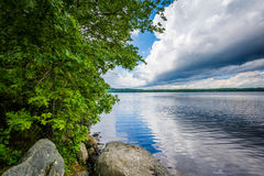 Rocas y árboles en la orilla del lago Massabesic, en castaño, nuevo fotografía de archivo