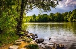 Rocas y árboles a lo largo de la orilla del lago centenario en Centennial imagen de archivo