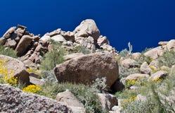 Rocas y brittlebush del granito en el pico del pináculo Fotos de archivo