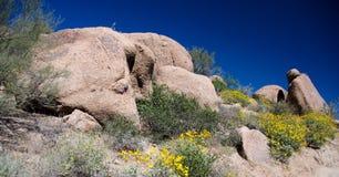 Rocas y brittlebush del granito en el pico del pináculo Foto de archivo libre de regalías