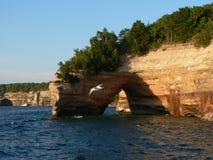 Rocas y gaviota representadas Foto de archivo libre de regalías