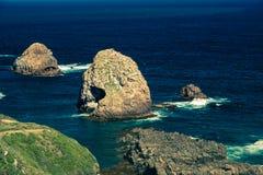 Rocas y océano de la punta de la pepita en Nueva Zelanda Imagen de archivo