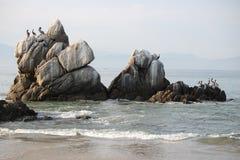 Rocas y pelícanos blancos Foto de archivo