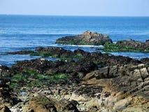 Rocce alla spiaggia dell'oceano Fotografie Stock