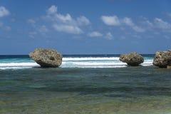 Rocce a Bathsheba Barbados Immagini Stock