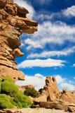 Rocce in Bolivia Fotografia Stock