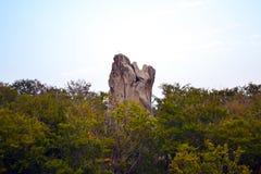 Rocce, cielo, montagne una foresta Immagini Stock