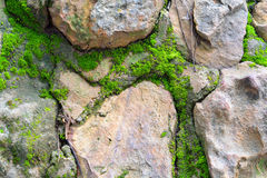 Rocce con il lichene fotografia stock