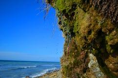 Rocce coperte di muschio sulla spiaggia Immagine Stock Libera da Diritti