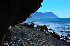Rocce coperte di muschio sulla spiaggia Immagini Stock