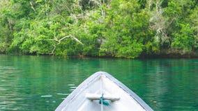 Rocce d'avvicinamento della barca invase con Palmtrees in baia nascosta su Gam Island vicino a Kabui ed al passaggio Papuan ad ov Immagine Stock Libera da Diritti