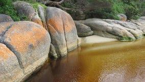 Rocce del fiume di marea Fotografia Stock Libera da Diritti