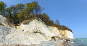 Rocce del gesso dell'isola di Rugen (Germania, Meclemburgo-Pomerania) Fotografia Stock Libera da Diritti