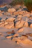 Rocce del paesaggio di tramonto del deserto Immagini Stock