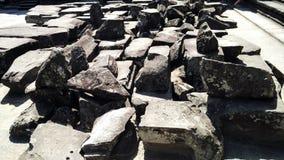 Rocce del tempio di Siem Reap Cambogia fotografia stock