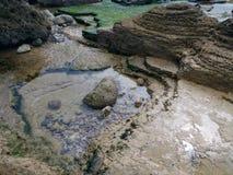 Rocce dell'alga Fotografia Stock