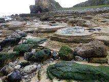 Rocce dell'alga Immagini Stock Libere da Diritti
