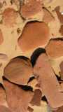 Rocce dell'arenaria rossa Immagine Stock