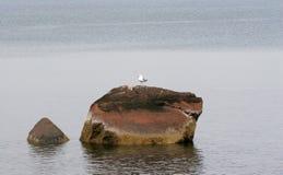 Rocce dell'oceano Fotografia Stock