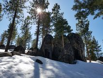 Rocce della foresta della neve Immagini Stock