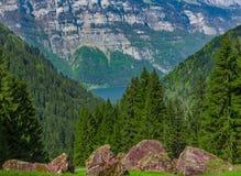 Rocce della montagna con la foresta nei precedenti Immagine Stock Libera da Diritti