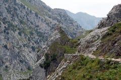 Rocce della montagna con un piccolo percorso Immagine Stock Libera da Diritti
