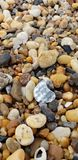 Rocce della spiaggia fotografie stock