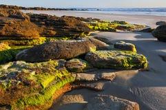 Rocce della spiaggia all'alba fotografia stock