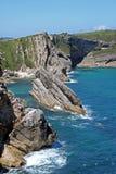 Rocce della spiaggia dell'oceano Immagini Stock Libere da Diritti
