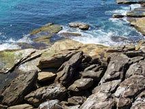 Rocce della spiaggia di Bondi Fotografia Stock