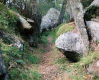 Rocce e fiume Fotografia Stock
