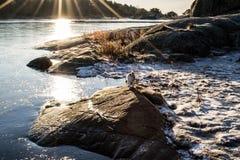 Rocce e ghiaccio Fotografia Stock Libera da Diritti